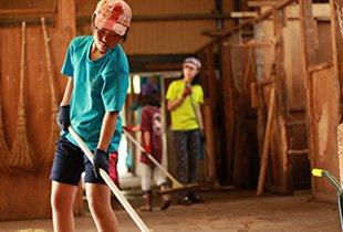 馬小屋の清掃
